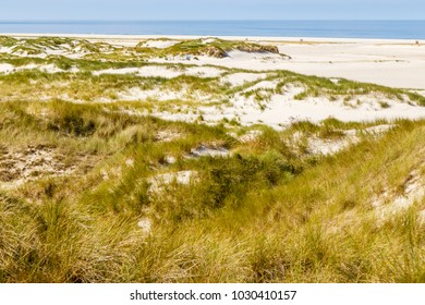 beach with dunes on Amrum, North Frisian Island, Germany