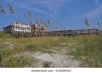 Beach dunes with sea oats blowing in the breeze.