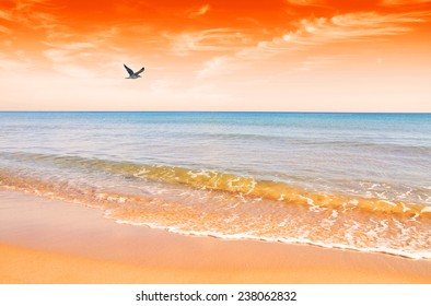 the beach is dyed red with sunrise