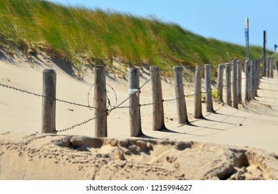 Beach fence buried in sand with sea grass in the background, Noordwijk, Netherlands