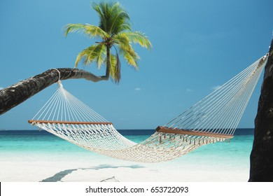 Beach Hammock between two palm trees on the maldives