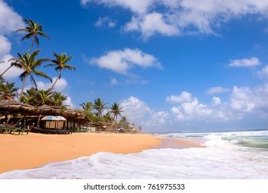 Beach in Hikkaduwa, Sri Lanka. Beautiful tropical beach with great waves for surfing. Beach bars and palm trees with coconuts on beach in Hikkaduwa, Sri Lanka.