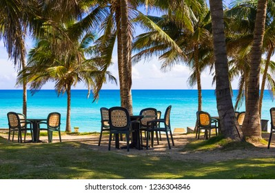 Beach and horizon view with palms in Varadero Cuba