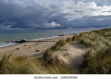 The beach at Horsey Gap, Norfolk, UK showing the seal colony with their newborn pups in the sunshine against a backdrop of black clouds
