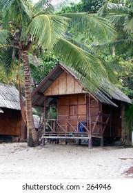 beach hut and palmtree