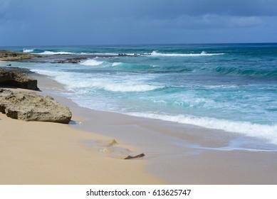 Beach at Kaena Point State Park