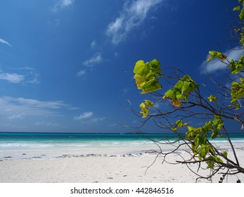 Beach at Kei Island in the Moluccas