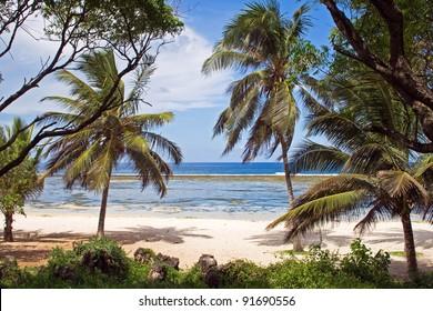 Beach in Kenya, Tiwi Beach
