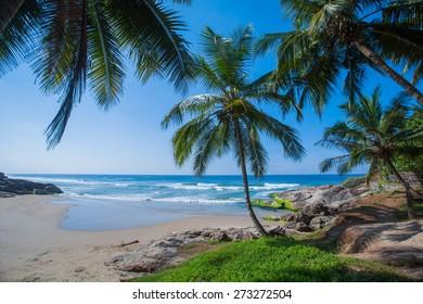 Beach in Kerala
