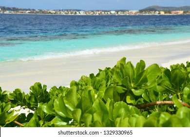 Beach at Klein Bonaire island, Netherland Antilles, Caribbean.