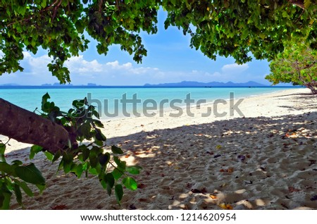 beach-koh-kradan-andaman-sea-450w-121462