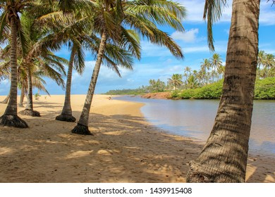 Beach landscape Bahia Brazil where the river meets the sea in sunny day weather blue sky little cloudy shiny moisture reflection in sand rocks and green trees nature paradise called Imbassai Sauipe