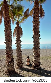 Beach landscape with palm trees in Almuñecar, Granada, Andalusia, Spain,