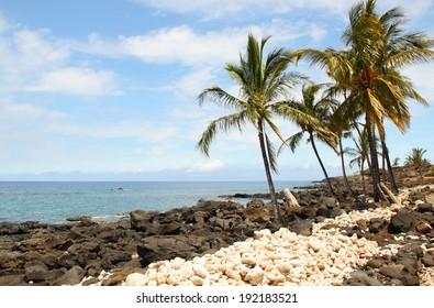Beach at Lapakahi State Historical Park, Big Island, Hawaii