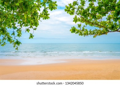 The beach with leaves in upper corner