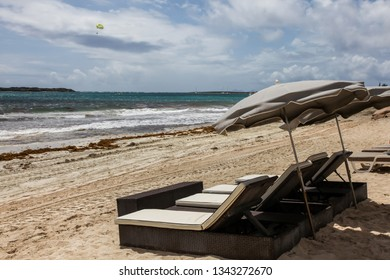 Beach Loungers and ocean view