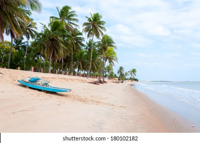 Beach at low tide with palms and boat in foreground, Pititinga, Natal (Brazil)