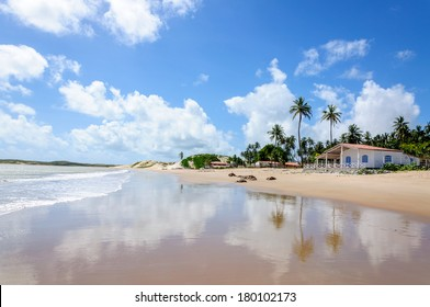 Beach at low tide with sand dunes and house, Pititinga, Natal (Brazil)