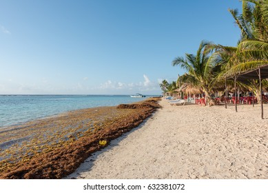 The beach in Mahahual, Mexico