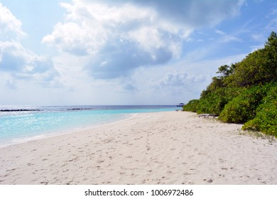 Beach in the Maldives with blue clear water and vegetation