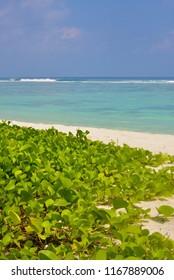 Beach in Maldives on Hulhumale Island