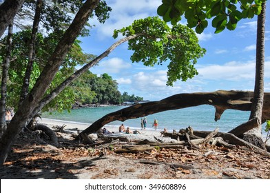 Beach at Manuel Antonio National Park, Costa Rica.