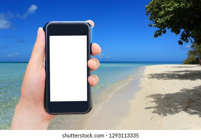 Beach and mobile phone