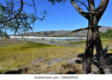 Beach with mountain, lake, wooden boardwalk and pine trees. Rocks, bright sand and turquoise water. Sunny day, blue sky, Galicia, Spain.