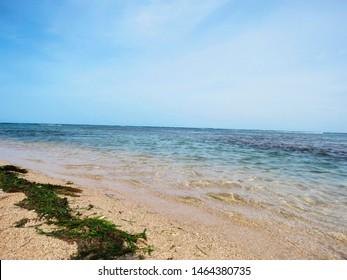 Beach of Nallathanni Island, Gulf of Mannar Biosphere Reserve, Tamil Nadu, India.