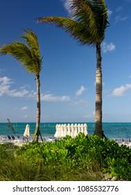 Beach in Nassau, Bahamas and the Caribbean Sea