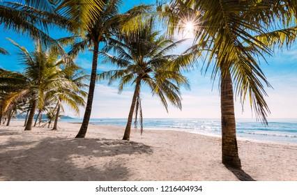 Beach near Hainan Wanning National Surfing Base