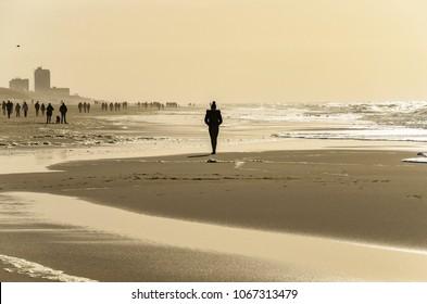 The beach near Westerland , Sylt island, at sunshine.