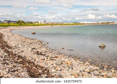 Beach on Galway South Park with rocks and yellow flowers, Galway, Ireland