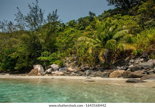 The beach on an island near Guanaja, Honduras