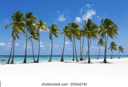Beach on the tropical island. Clear blue water, sand and palm trees. Beautiful vacation spot, treatment and aquatics.