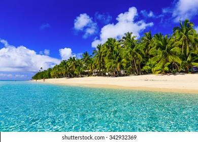Beach on the tropical island & clear blue water. Dravuni Island, Fiji.
