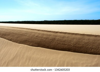Beach, Oregon Sand Dunes, Nature and Landscape, Pacific Northwest