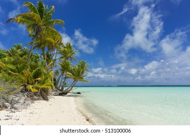 Beach and palm trees, French Polynesia, Teriaroa