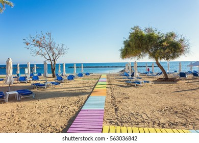 Beach and palm trees, sunny day in the resort of Paphos, Cyprus