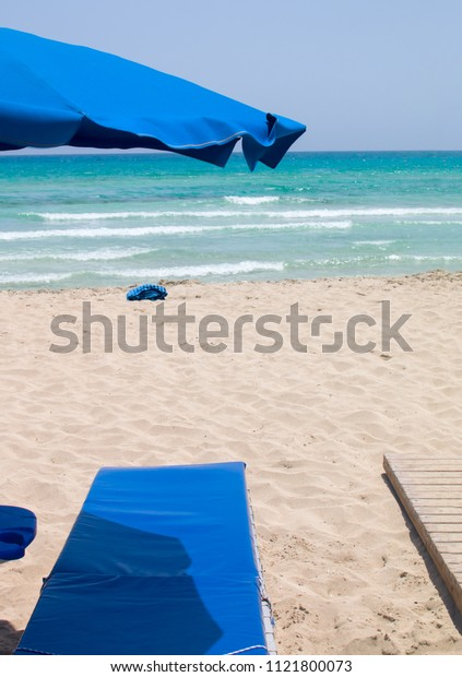 Beach and palm trees, sunny day Cyprus