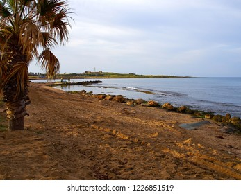 Beach and palm trees in the sunny resort city of Paphos Cyprus - popular summer travel destination