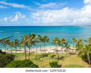 Beach and palm trees in Waikiki Hawaii