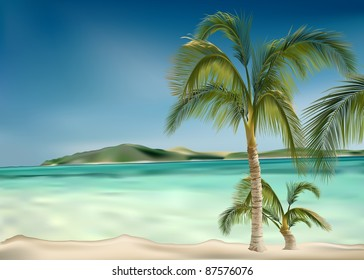 Beach and Palms - colored background