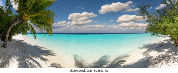 Beach panorama at Maldives with blue sky, palm trees and turquoise water