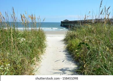 Beach path to ocean