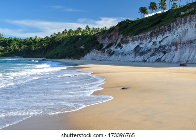Beach of Pipa, with cliffs and palms in background, Natal (Brazil)