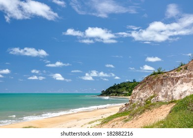 Beach of Pipa, with sand dunes and palms in background, Natal (Brazil)