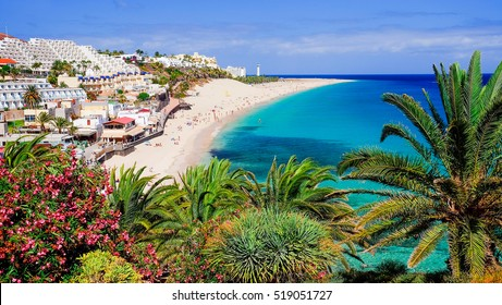 The beach Playa de Morro Jable with green palms, view on the town and the Atlantic coast. Location the Canary island Fuerteventura, Spain - 20.06.2016.