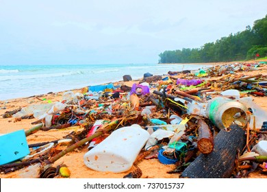 Beach pollution, plastic and waste from ocean on the beach