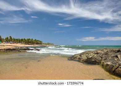 Beach of Praia do Forte with cliffs in foreground, Salvador de Bahia (Brazil)